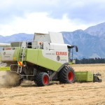 Methven Harvesting - Contract Harvesting, Ashburton District (1)