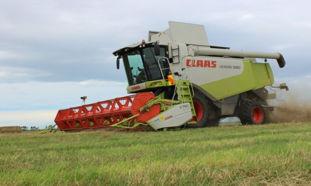 Methven Harvesting - Contract Harvesting, Ashburton District (3)