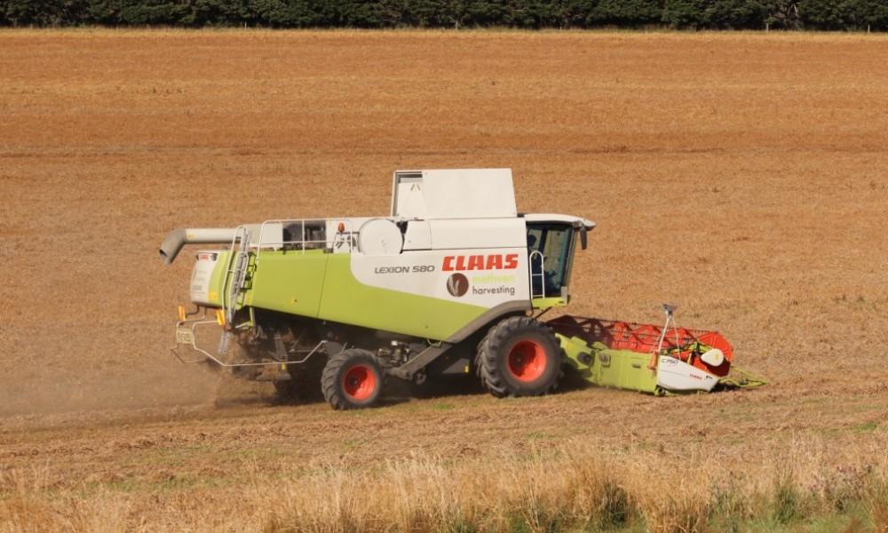 Methven Harvesting - Contract Harvesting, Ashburton District (6)