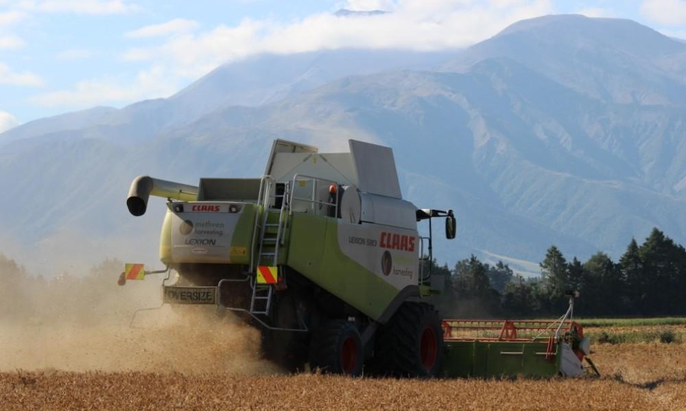 Methven Harvesting - Contract Harvesting, Ashburton District (7)